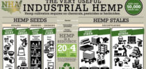 Getting Started in the Industrial Hemp Industry – One Perspective