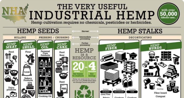 the controversies surrounding the cultivation and research of industrial hemp Without getting into the controversies surrounding the legislation of hemp cultivation remarkably hemp and is on the forefront of hemp research and.