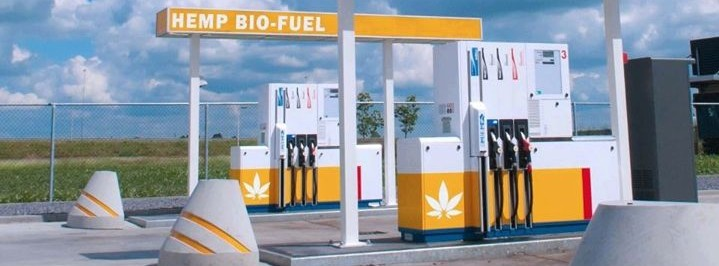 Image result for hemp and biodiesel