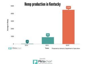 Kentucky_Hemp_Production