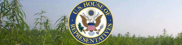 Polis, Blumenauer, Bonamici Introduce Hemp Resolution