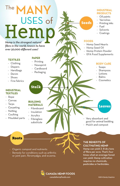 Hemp Infographic National Hemp Association