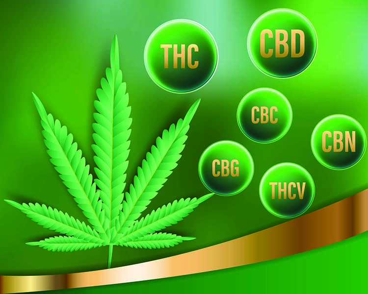 A list of The Different Cannabinoids found in Hemp