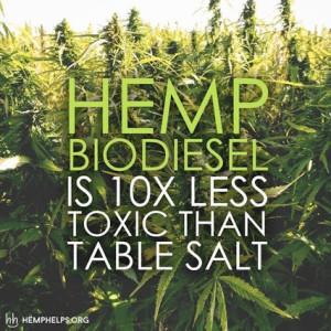 hemp_biodiesel