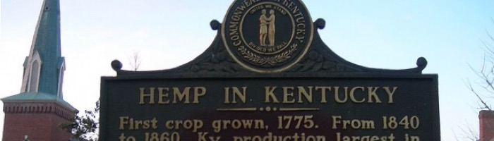 Hemp Is the New Tobacco as Kentucky Farmers Bet on Weed's Cousin